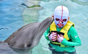 Ronald Weaver Plays With Dolphins